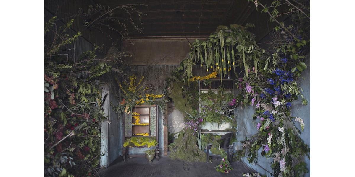 Последний глоток жизни: дом, подлежащий сносу, украсили 4000 цветов